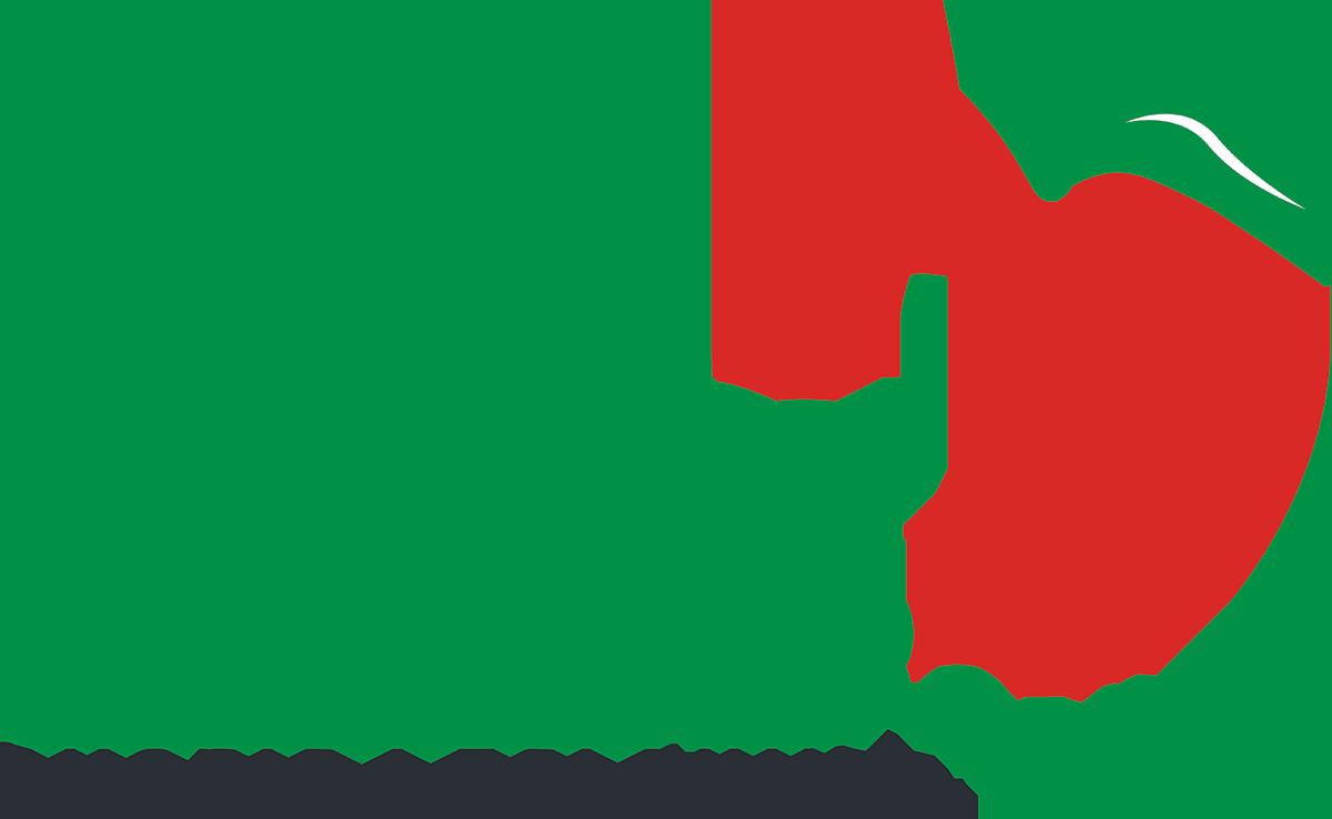 lunys_png (3)